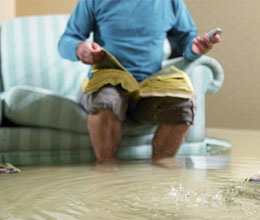Water Damage Dolans Bay