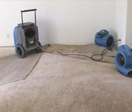 Drying Wet Carpets Sydney